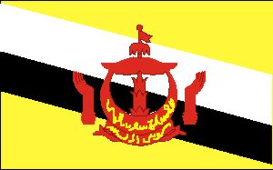 National flag: Brunei Darussalam