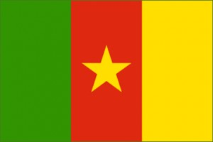National flag: Cameroon